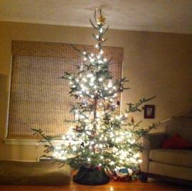 tree complete