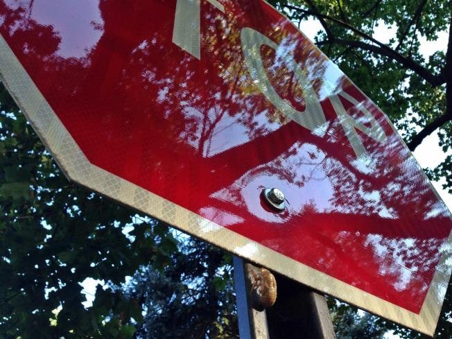 cicada stop