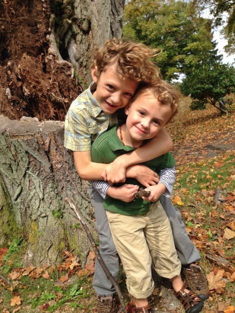 rotten tree hug