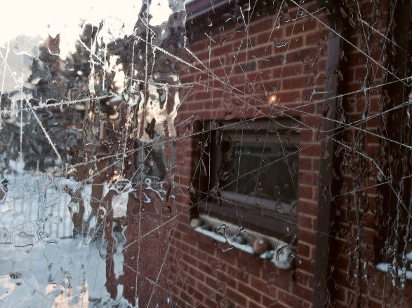 glassy ice window